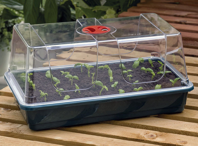 SMALL GERMINATION GREENHOUSE