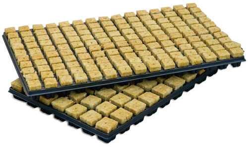 GERMINATION TRAY 25x25x40mm  (150 CELLS)