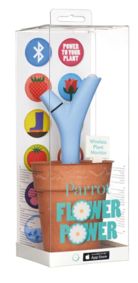 MEDIDOR FLOWER POWER PARROT