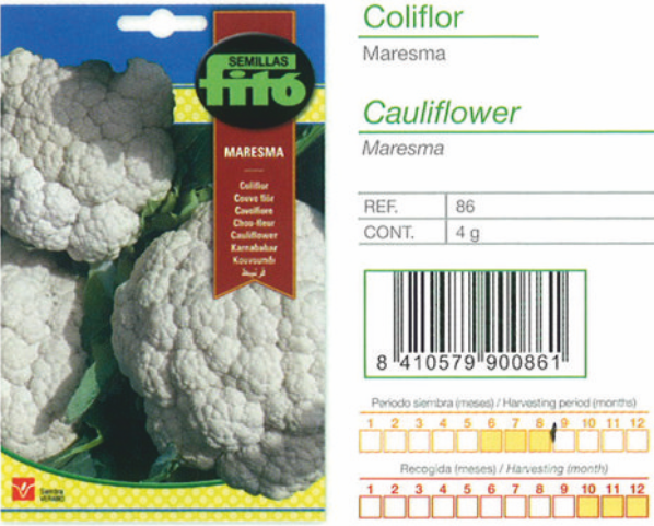 CAULIFLOWER SEED