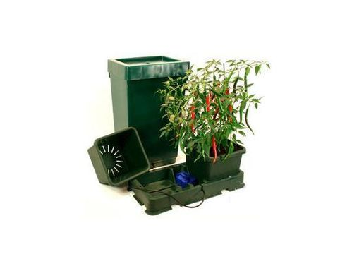 KIT EASY2GROW AUTOPOT2
